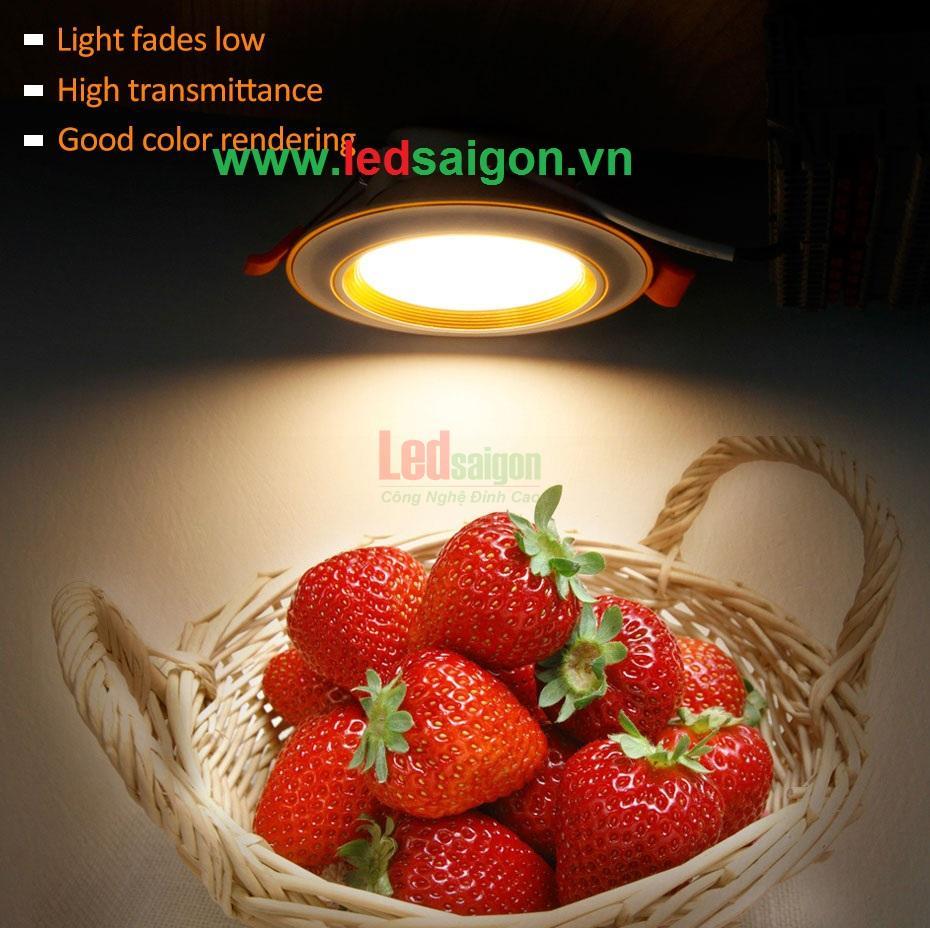 Phân phối đèn led Golden Home