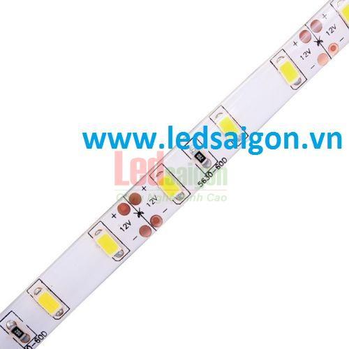 led dây dán 5630 siêu sáng