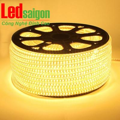 Led Cuộn 100M SMD 3014